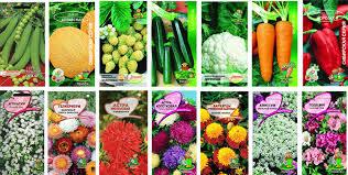 Каталог профессиональных семян